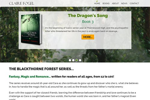 Custom website for Claire Fogel, Author